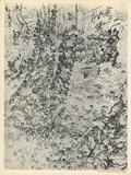 Lierre Avec Banc de Pierre Collectable Print by Vincent van Gogh