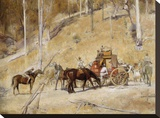 Bailed up Stretched Canvas Print by Tom Roberts