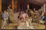 Shearing the Rams Stretched Canvas Print by Tom Roberts