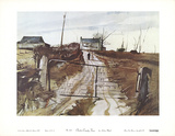 Chester County Fair Collectable Print by Andrew Wyeth