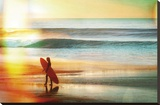 California Cool - Solo Stretched Canvas Print by Chuck Brody
