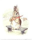 The Story of a Fierce Bad Rabbit Samlertryk af Potter, Beatrix