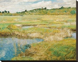 The Concord Meadow, c.1890 Stretched Canvas Print by Frederick Childe Hassam
