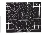 Basket of Begonias Samletrykk av Henri Matisse