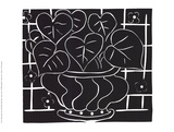Basket of Begonias Collectable Print by Henri Matisse