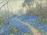 A Hillside of Bluebonnets - Early Morning, Near San Antonio Texas Giclee Print