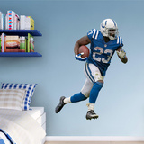 NFL Frank Gore Wall Decal