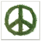 Grass Peace Sign Wall Plaque Art Wood Sign