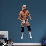 WWE Dolph Ziggler 2015 RealBig Wall Decal