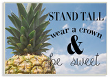 Be A Sweet Pineapple Typography Wall Plaque Art Wood Sign