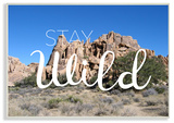 Stay Wild Desert Landscape Wall Plaque Art Wood Sign