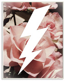 Graphic Lightning Bolt and Roses Wall Plaque Art Wood Sign