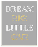 Dream Big Little One Grey Gold White Loopy Text Wall Plaque Art Wood Sign