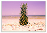 Pink Purple Pineapple Beach Wall Plaque Art Wood Sign