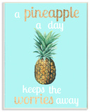 A Pineapple A Day Keeps the Worries Away Wall Plaque Art Wood Sign
