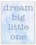 Dream Big Little One Blue Wall Plaque Art Wood Sign