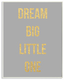 Dream Big Little One Gold and Grey Wall Plaque Art Wood Sign