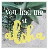 You Had Me At Aloha Wall Plaque Art Wood Sign