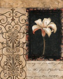 Night Florescence I Prints by Carol Robinson