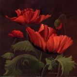 Vibrant Red Poppies II Print by Gloria Eriksen