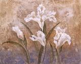 Fleurs Meditatives I Posters by Eugene Tava