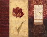 Tulip Montage Prints by Carol Robinson