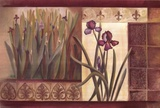 Iris Fantasy Posters by Pamela Luer