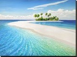 Isola tropicale Stretched Canvas Print by Adriano Galasso