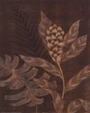 Tropical Night II Prints by Jane Carroll