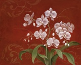 Say it with Orchids II Prints by Eugene Tava
