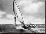 Under sail, Sydney Harbour Stretched Canvas Print by  Anonymous