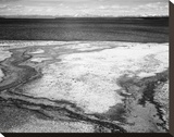 Hot Springs Overflow, Yellowstone National Park, Wyoming, ca. 1941-1942 Stretched Canvas Print by Ansel Adams