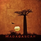Vintage Baobab Trees at Sunset in Madagascar, Africa Prints by  Take Me Away
