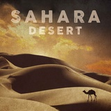 Vintage Sahara Desert with Sand Dunes and Camel, Africa Prints by  Take Me Away
