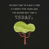 The Best Time to Plant a Tree on Black Prints by  Color Me Happy