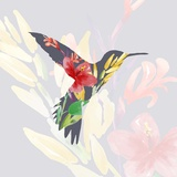 Grey Floral Hummingbird Posters by  Color Me Happy