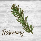 Rosemary on Wood Prints by  Color Me Happy