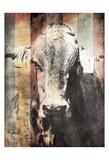 Miultiwood Vintage Cow Prints