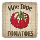 Vine Ripe Tomatoes Print