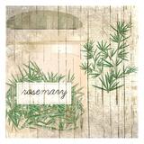 Rosemary Prints