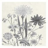 Terrarium Flower Print