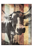 Miultiwood Vintage Cow Mate Poster