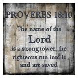 Proverbs 18-10 Print