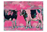 Pink Cows 1 Prints