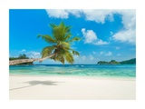 Tropical beach, Seychelles (detail) Giclée-tryk af  Anonymous