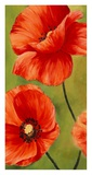 Poppies in the wind I Giclee Print by Luca Villa