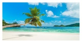 Tropical beach, Seychelles Giclee Print by  Anonymous