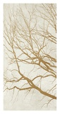 Golden Tree I Giclee Print by Alessio Aprile