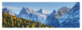 Larch forest and Cima bel Pra, Italy Giclee Print by Frank Krahmer