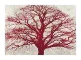 Purple Oak Giclee Print by Alessio Aprile